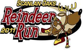 Reindeer Run 2011 Graphic